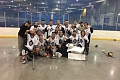 dpbhl_tier3_4sunday_fall_vaughan_lions.jpg